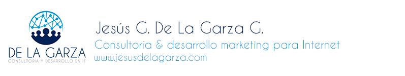 Jesus G De La Garza G / Consultoría en Internet